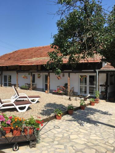Sunflower Guest House Bulgaria