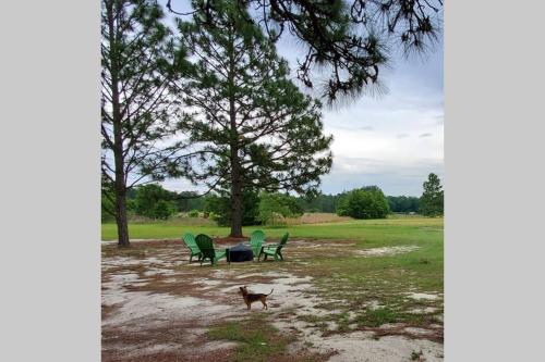 Quiet Country Living - McCain, North Carolina