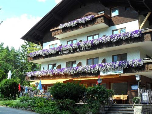Hotel-overnachting met je hond in Pension Alpina - Obsteig