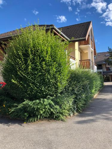 . Appartement Saint-Jorioz