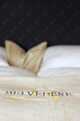 Фото отеля Hotel Belvedere