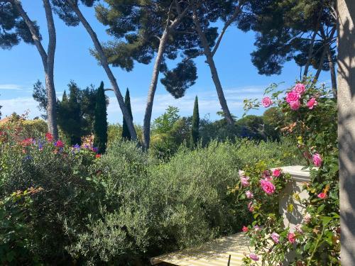 Toulon Charmant Appartement T2 - Location saisonnière - Toulon