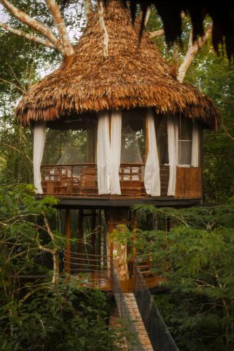 Treehouse Lodge, Requena