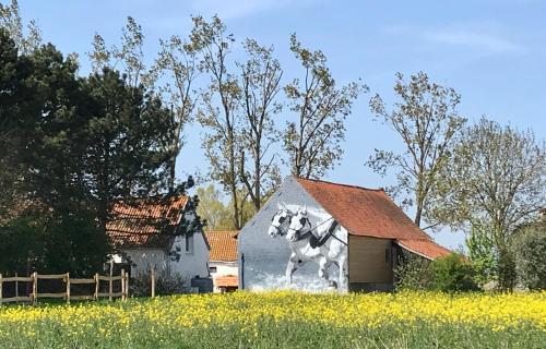 La Ferme Wessière - Location saisonnière - Oye-Plage