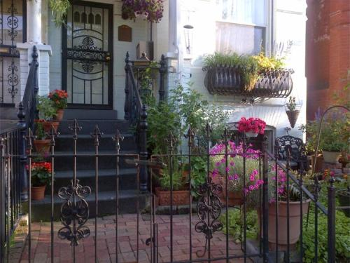 Ledroit Park Renaissance Bed and Breakfast - Accommodation - Washington