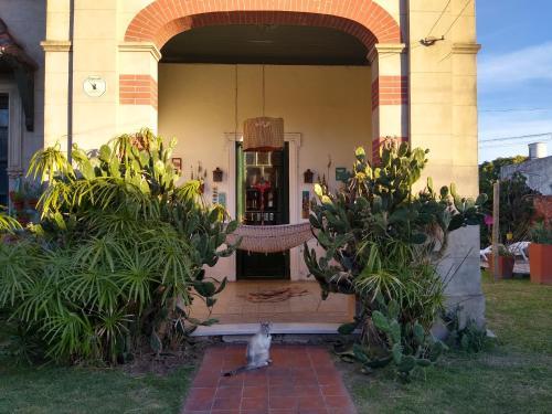 Villa Lola Bed & Breadfast