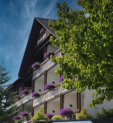 . Landhotel Henkenhof Willingen