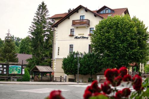 . Hotel Bitoraj Fužine