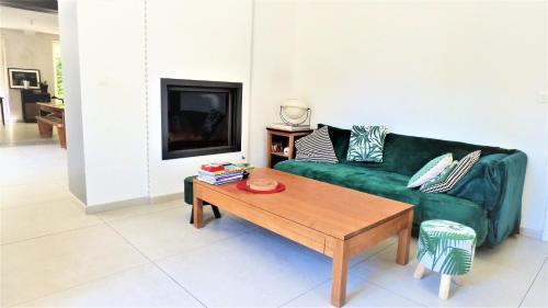 Magnifique maison 240 m2 jardin, parking, centre-ville vacances-arles camargue - Location, gîte - Arles