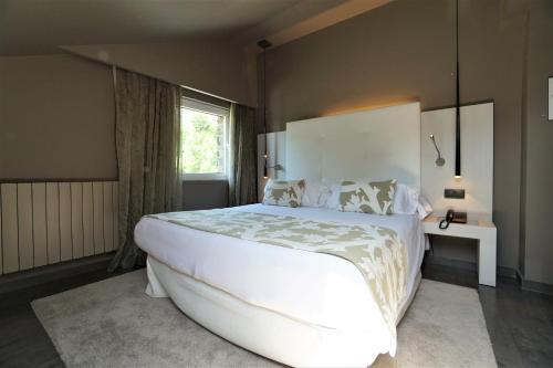 Single Room Hotel & Spa Xalet Bringue 1