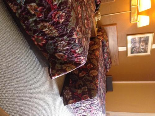 Sportsman Inn & Suites - Antlers, OK 74523