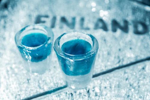 Arctic Glass Igloos
