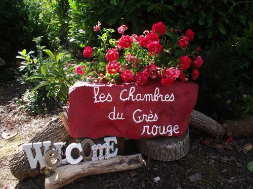 chambres du grès rouge de Beauval - Chambre d'hôtes - Beauval