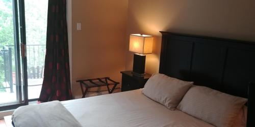 Backpacker Student near McGill University - Entire One Bedroom Studio Suite w Private Bathroom
