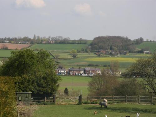 Wall Hill Farm - Photo 2 of 16