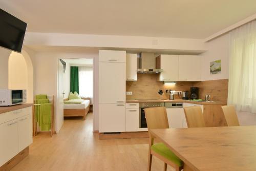Appartements Frauenschuh - Apartment - Schladming