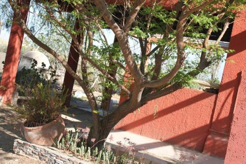 Casa de Campo Los Horneros - Pocito