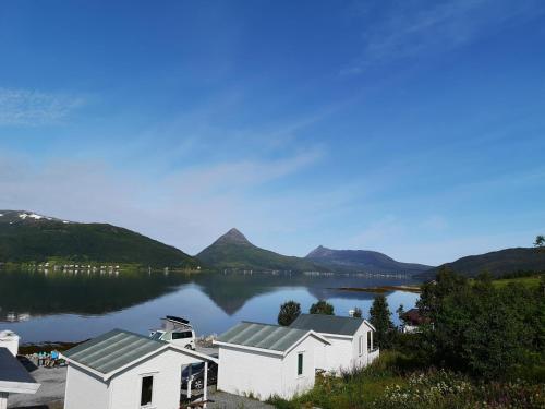 Fjordbotn Camping - Photo 6 of 29