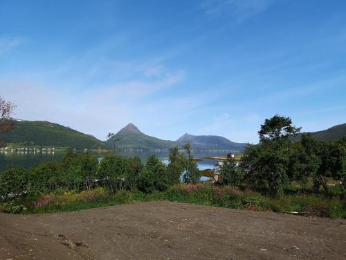 Fjordbotn Camping - Photo 5 of 29