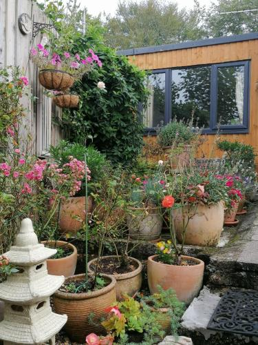 The Garden Room, Gunnislake, Cornwall