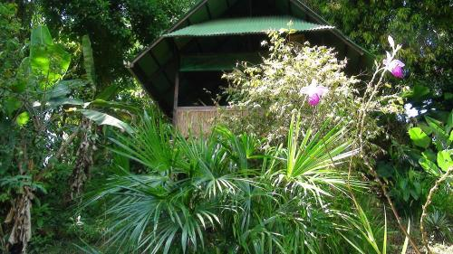 Ka'kau Jungle Cabinas