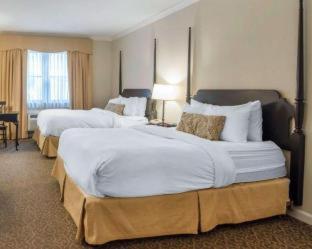 Room #2996508