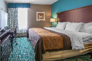 Comfort Inn & Suites Fort Lauderdale West Turnpike - image 12