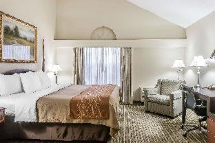 Room #49037008
