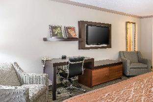 Room #49037013