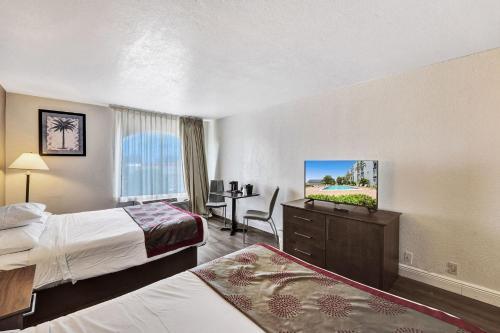 Plaza Hotel Fort Lauderdale - image 12
