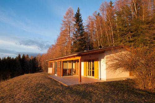 Ferienhaus Weissegger - Apartment - Lavamünd