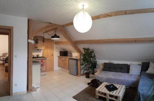 Accommodation in Fouchy