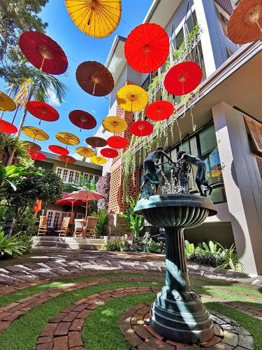 Fang Chiang Mai