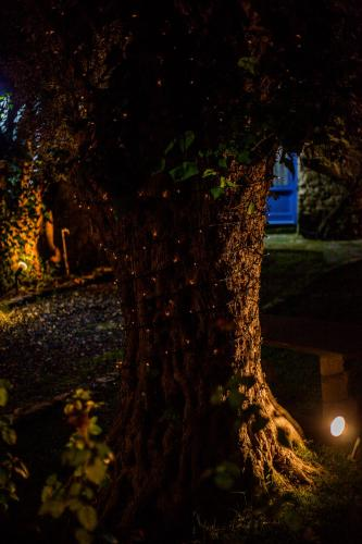 Cecilias Courtyard - Photo 5 of 46