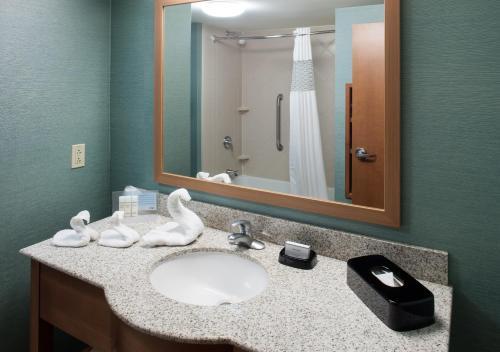 Hampton Inn & Suites St. Louis at Forest Park - Saint Louis, MO MO 63110