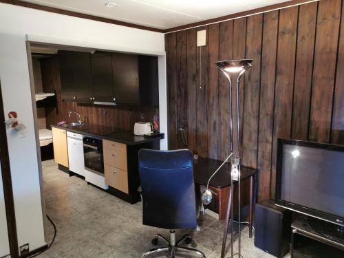 Trivelig møblert leilighet - Gol - Apartment
