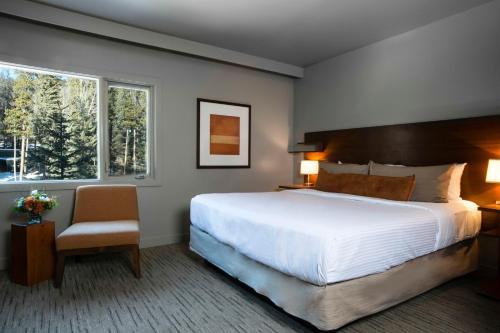 Photos de salle de The Juniper Hotel & Bistro
