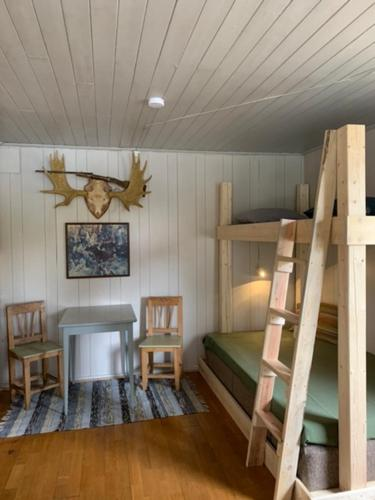 Nice Northern Light-cabin in Lapland