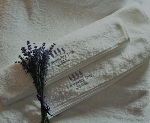 Lavender Inn Guest House - Photo 6 of 158