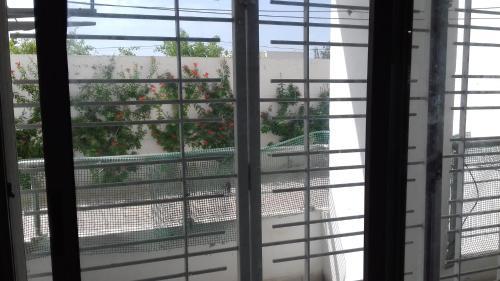 S+2 soukra Tunis