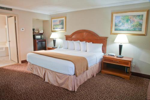 Red Arrow Inn & Suites - Montrose, CO 81401