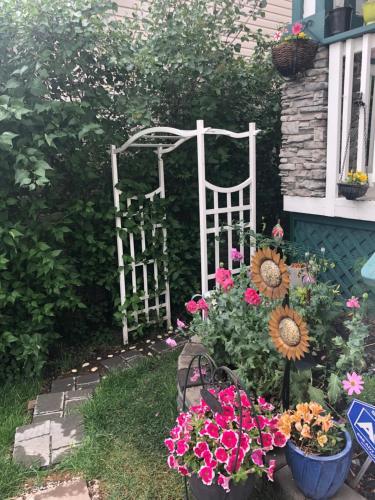 Calgary Banff Back Garden
