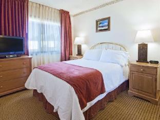 Room #51516003