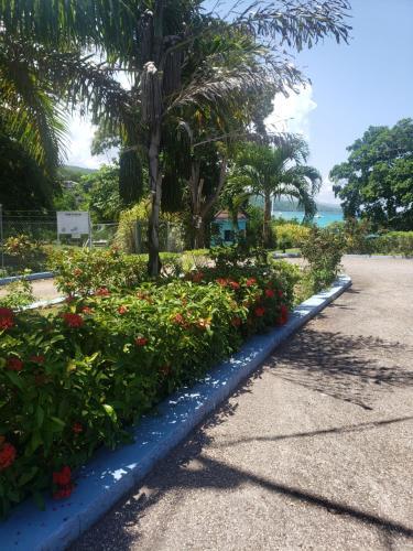 KMH Carib Beautiful Ocean View Condo 2bed&2bath