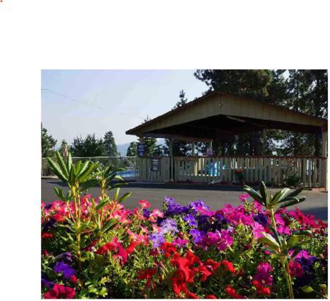 Swiss Holiday Lodge - Mount Shasta, CA 96067