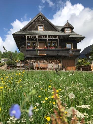 Villa Zdiar 681 - Accommodation - ?diar
