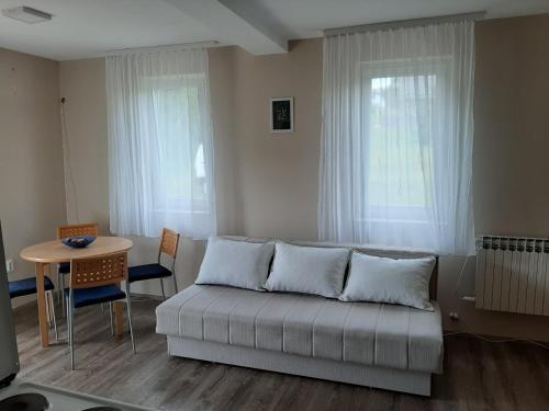 Apartman Ašanin - Hotel - Divcibare