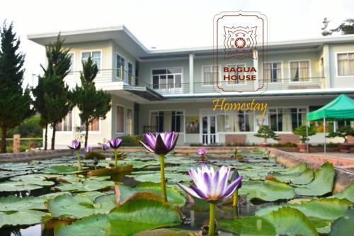 Bagua House - Homestay, Bảo Lộc