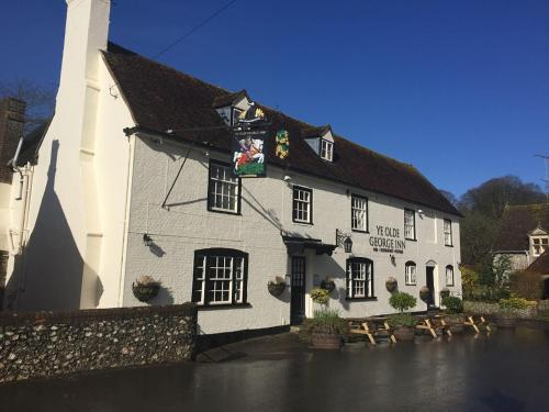 Hotel-overnachting met je hond in Ye Olde George Inn - Badger Pubs - Privett
