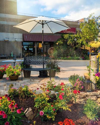 Centerstone Plaza Hotel Soldiers Field - Mayo Clinic Area - Rochester
